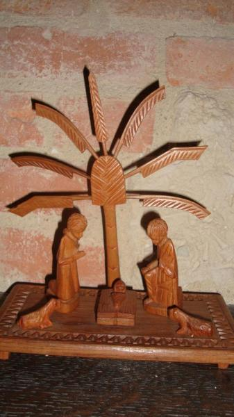 """Madagascar  """"L'arbre du voyageur""""  le ravleau(palissandre)"""